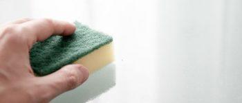 Spülschwämme werden schnell zum Brutnest für Bakterien. © jarmoluk / Pixabay.com / CC0 / TRD Gesundheit