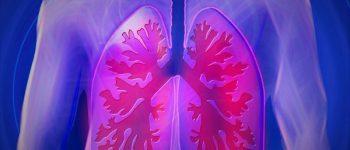 mmer mehr Menschen leiden an Lungenkrankheiten. Für viele ist eine Transplantation die letzte Hoffnung. © bykst / Pixabay.com / CC0/ TRD Gesundheit